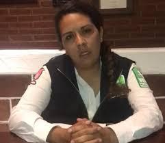 Asesinan a dos militantes del Partido Verde tras asamblea municipal en  Tlalmanalco - Plana Mayor
